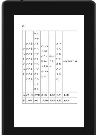 Kindleプレビュー画面で表示された表の画像